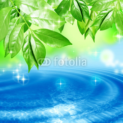 Obraz na płótnie canvas trzyczęściowy tryptyk Liście kołyszące się na powierzchni wody