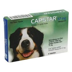 Capstar 57 mg tabletten für grosse hunde