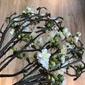 Hk living :: gałąź kwiatu brzoskwini