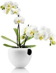 Samopodlewająca doniczka orchid biała