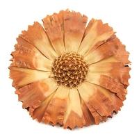 Suszony kwiat ozdobny 7 cm