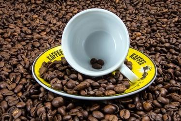 Fototapeta filiżanka z ziarnami kawy fp 1168