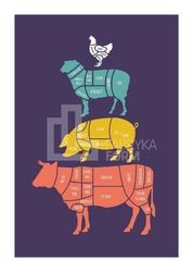 Plakat Meat Cuts kolorowy 40 x 50 cm