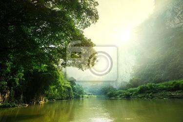 Fototapeta tropical river