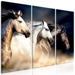 Obraz - synowie wiatru 3-częściowy