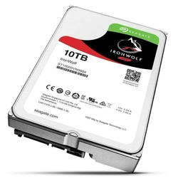 Seagate IronWolf 10TB 3,5256MB ST10000VN0004
