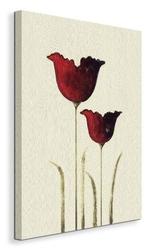 Tulips ii - obraz na płótnie