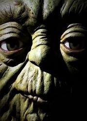 Face it star wars gwiezdne wojny - master yoda - plakat wymiar do wyboru: 29,7x42 cm