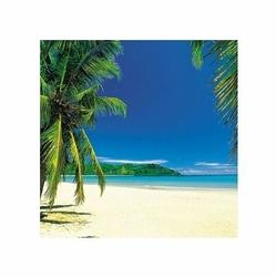 Palmy na Plaży - reprodukcja