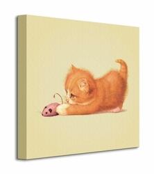 Cat - Obraz na płótnie