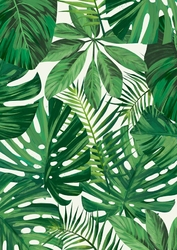 Zielone tło - plakat Wymiar do wyboru: 60x80 cm