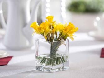 Wazon szklany na kwiaty edwanex liść kwadratowy 10 cm