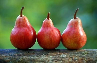 Fototapeta trzy czerwone gruszki fp 921