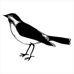 Stempel gumowy Ptak