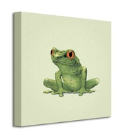 Frog - obraz na płótnie