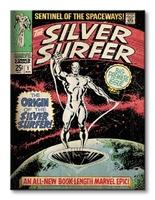 Silver surfer the origin - obraz na płótnie