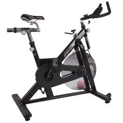 Rower spiningowy omegus - insportline