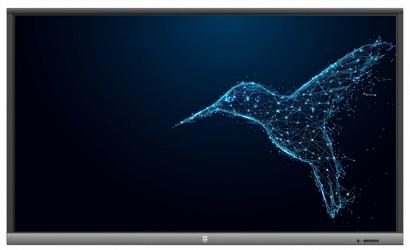 AVTek Monitor interaktywny TouchScreen 5 LITE 65