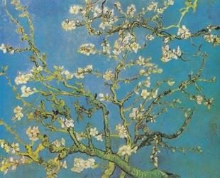 Migdałowiec Van Gogh - plakat Wymiar do wyboru: 29,7x21 cm