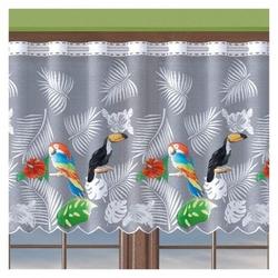 Firanka papugi wysokość 70 cm