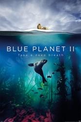 Blue planet 2 take a deep breath - plakat