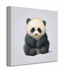 Panda  - Obraz na płótnie