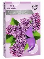 Bispol, lilac, podgrzewacze zapachowe, 6 sztuk