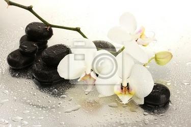 Obraz kamienie spa i kwiatów orchidei, na białym tle.
