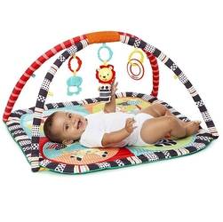 Bright starts mata sensory zoo bs52039