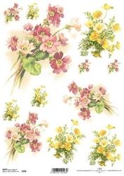 Papier soft itd a4 s296 prymulka kwiaty - 296