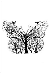 Motyl - plakat wymiar do wyboru: 21x29,7 cm