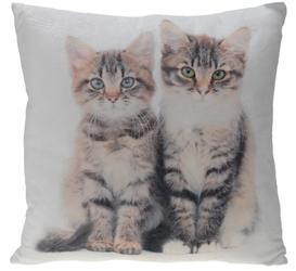 INTERIOR SPACE :: Poduszka Cats 45 x 45 cm- wzór 1 - wzór 1