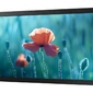 Samsung monitor 13 cali qb13r lh13qbrebgcxen