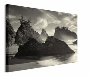 Seastack Beach - obraz na płótnie