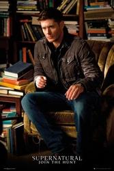 Nie z Tego Świata Dean - plakat