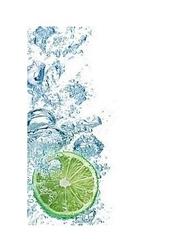 Limonka - reprodukcja
