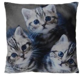 Interior space :: poduszka cats 45 x 45 cm - wzór 3