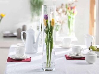 Wazon szklany na kwiaty cylinder 50 cm