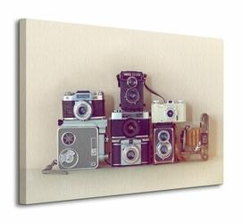 Camera Collection - Obraz na płótnie