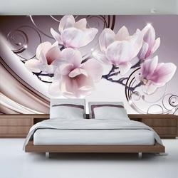 Fototapeta - spotkanie z magnolią