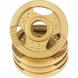Zestaw obciążeń żeliwnych 4x0,5kg złote