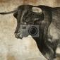 Obraz szkic wykonany z cyfrowym tablecie hiszpańskiego byka