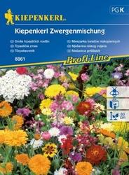 Kwiaty niskie – mix nasion – kiepenkerl