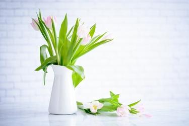 Fototapeta na ścianę tulipany w białym wazonie fp 3609