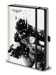 Batman arctic dc comics - notes