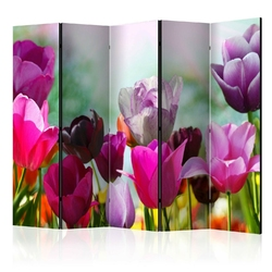 Parawan 5-częściowy - piękne tulipany ii room dividers