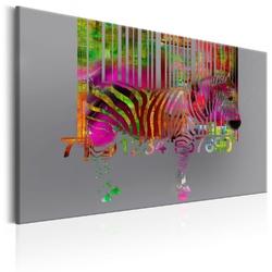 Obraz - kod zebry