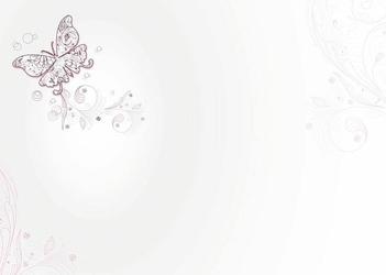 tablica suchościeralna drukowana 081 motyl
