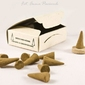Amber cones - żywica drzewa saal