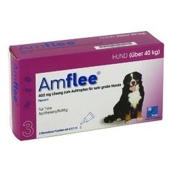 Amflee 402 mg lösung zur, zum auftropfen für sehr gr.hunde